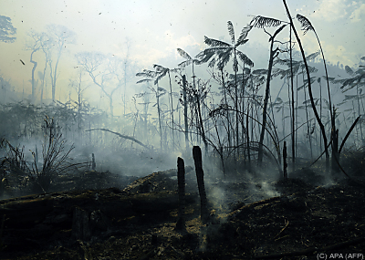 Keine guten Nachrichten im Kampf gegen den Klimawandel (Archivbild) - Novo Progresso, APA (AFP)