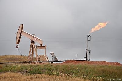 OPEC erwartet 2022 Normalisierung  - Williston, APA/AFP