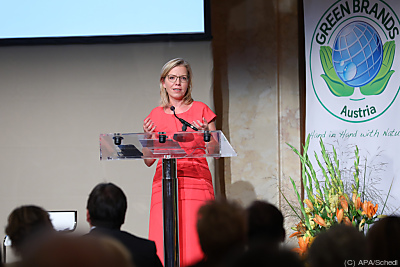 Energieministerin Leonore Gewessler  - Wien, APA/Schedl