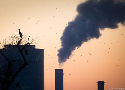 Um 8,7 Prozent weniger Treibhausgas-Emissionen als 2019  - Frankfurt/Main, APA (dpa)