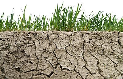Herausforderung für die Landwirtschaft - Mank, APA