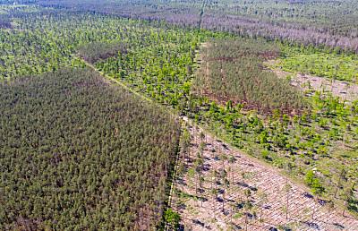 Klimaschutz soll größer geschrieben werden  - Oranienbaum-Wörlitz, APA/dpa-Zentralbild