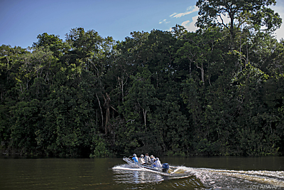 Ökosystem Amazonas ist angeschlagen  - Oriximiná, APA/AFP