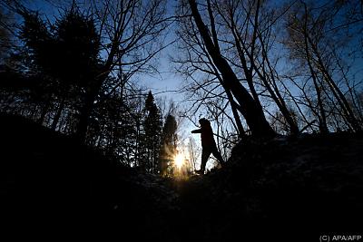 """Waldbestand """"hoch relevant für das Klima"""" - Zykeyevo, APA/AFP"""