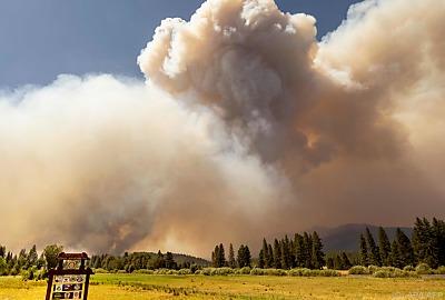 Brände in Kalifornien - IPCC warnt vor weiteren Naturkatastrophen - Plumas County, APA/AFP