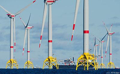 """Windpark """"Wikinger"""" in der Ostsee  - Sassnitz, APA/dpa"""