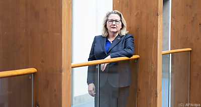 Deutschlands Umweltministerin Svenja Schulze  - Berlin, APA/dpa