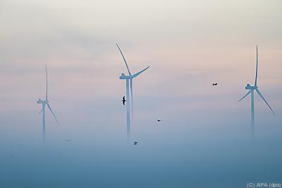 Aber zu wenig für Klimaziel  - Großenmeer, APA (dpa)